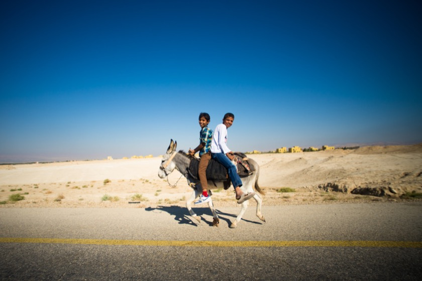 Two boys riding a donkey near the Dead Sea